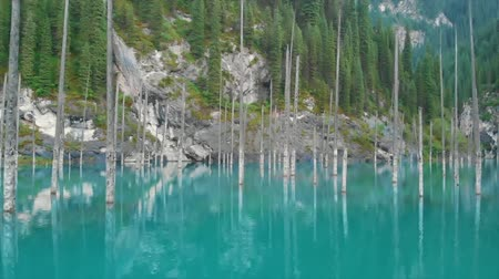 northen : Kaindy Lake in Kazakhstan Known Also as Birch Tree Lake or Underwater Forest.