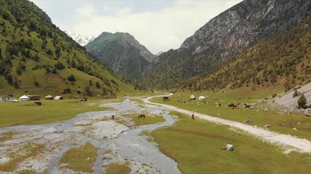 przeszczep : Murdash Village Alay Valley Kyrgyzstan Osh Region. A View of Alay Valley, Trans-alay Range, and Kyzyl-suu (West) River. Alay Mountains. Wideo