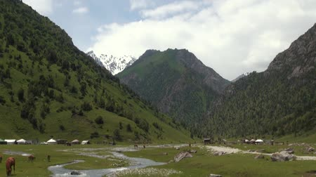 alay valley : Murdash Village Alay Valley Kyrgyzstan Osh Region. A View of Alay Valley, Trans-alay Range, and Kyzyl-suu (West) River. Alay Mountains. Stock Footage