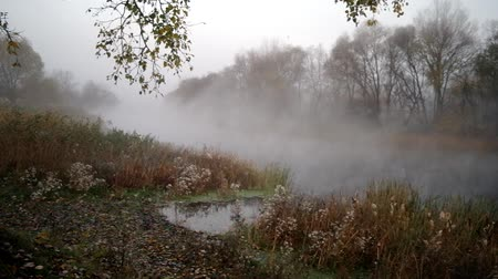 enevoado : morning with mist over river