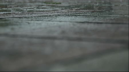 paving : Rain goes on paving slab and puddle. Selective focus. Close-up. Stock Footage