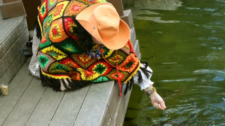 pato real : Abstract swimming colorful carp or koi fish swimming at pond or lake. And the woman who gives them food.