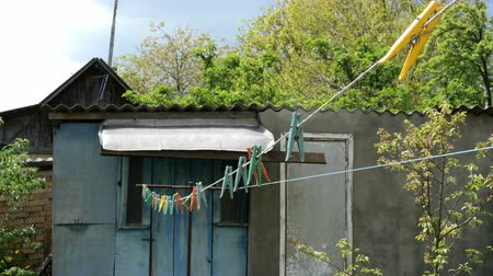 prendedor de roupa : Household. Multicolored plastic clothespins, hanging on the clothesline