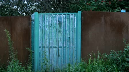 wicket : Closed, grass-covered blue doors or wicket in fence in the countryside. Abandoned gate. Rural scene. Uninhabited place.