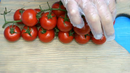tomates cereja : Human hands in disposable gloves, put branches of cherry tomatoes on a cutting board. Vídeos