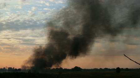 Column of black smoke in sky above field or meadow. This is fire, burns agricultural debris or explosion. Smoke swirls and is carried away by wind. Against of sunset and clouds. Outdoors.