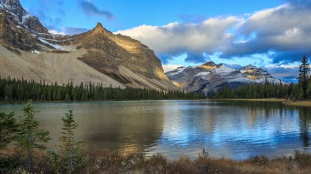 kanada : Bow Lake, Alberta, Canada Stok Video