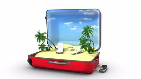 vacation : Package beach vacation Stock Footage
