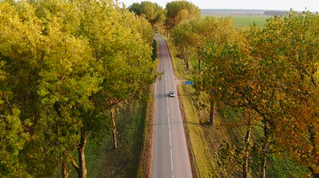 Gray car with roof trunk is moving on autumn rural countryside road at sunset across trees. Stock mozgókép
