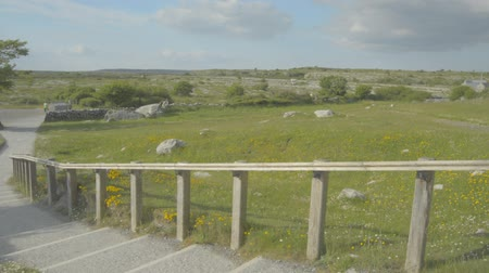 pré histórico : 5000 years old Polnabrone Dolmen in Burren, National Park, Co. Clare - Ireland - Flat video profile.