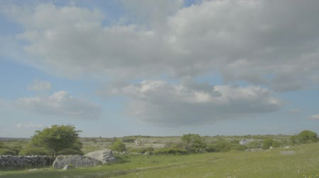 prehistory : 5000 years old Polnabrone Dolmen in Burren, National Park, Co. Clare - Ireland - Flat video profile.