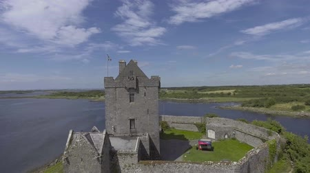 İrlanda : Aerial drone view Dunguaire castle near Kinvarra in Co. Galway, Ireland - Irish public tourist attraction. Wild Atlantic Way Route Stok Video