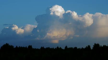 гром : Epic storm clouds forming over spruce trees silhouettes, timelapse. Fluffy cloudy cumulonimbus cloudscape in blue sky background.