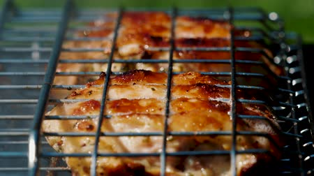 picante : Golden delicious chicken pieces frying on barbecue grill. Prepare tasty and marinated fresh meat on charcoal bbq grill. Outdoor summer party ideas. Vídeos