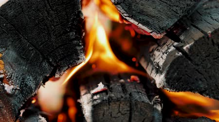 zapalovač : Slow motion of colorful burning flame in campfire. Close up of burning firewoods. Tongues of fire on logs.