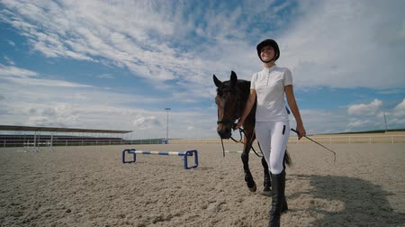 galope : Young woman horseman walk with brown horse holding the reins at sandy parkour riding arena. Training horses at outdoors, equestrian sport. Slow motion. Vídeos
