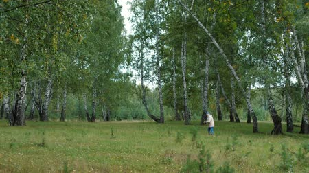 wood glade : Woman picks mushrooms in the autumn forest. Mushroomer walks through the green birch wood looking for mushrooms. Stock Footage