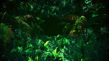 Adventure In Jungle Summer is motion footage for adventure films and cinematic in jungle scene. Also good background for scene and titles