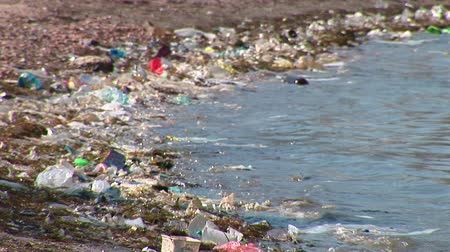 plastics : Rubbish at the seaside.