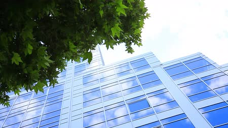 glass building : Offices building. Stock Footage