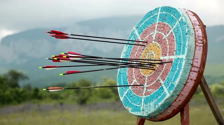 isabet : Target for archery, close up