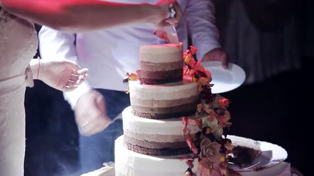 tiered : the couple cut the wedding cake Rustic