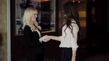 boss : Business Meeting women partners for contract Stock Footage