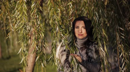 честный : beautiful girl among the branches a willow tree