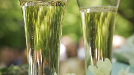 double happiness : Bubbles of champagne in wedding glasses Stock Footage