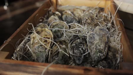 speciality : Oysters in a wooden box with hay