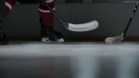 faceoff : High angle view of hockey official dropping a puck and two opposing players attempting to win a face-off, close-up Stock Footage