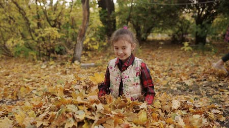 vassoura : The mischievous little girl merrily plays in a big pile of yellow foliage. Girl throws yellow leaves up.