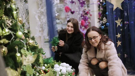 placeholder : Two women choose Christmas decorations in the supermarket.