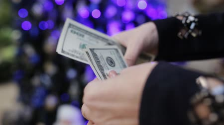 allowance : Womens hands counting dollars on the background of the Christmas tree. Time to buy holiday gifts.