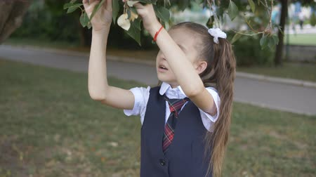 botanikus : School girl in school uniform off of a tree leaf and carefully examines it. Homework botany. Stock mozgókép