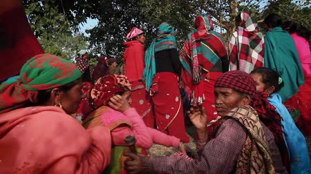 third world : Bardia, Nepal - January 16, 2014: Traditional folklore womens dance during Maggy festival in Bardia, Nepal Stock Footage
