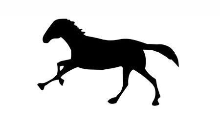 friesian : Running horse silhouette ( Seamless Loop ) Stock Footage