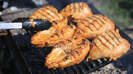 chicken cooked on the grill
