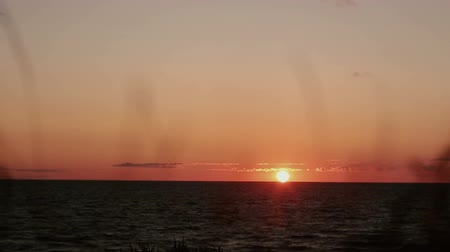 pinky : A time lapse video of pinky-orange sunset at sea side with dry grass swaying in the front view. Stock Footage