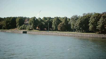 yırtıcı hayvan : A small flock of white seagulls follows a boat flittering their wings in the air above it. Steadicam shot
