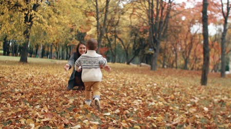 throws : cute little boy running through the amazing autumn alley in the park came into the arms of his beautiful mother slow mo