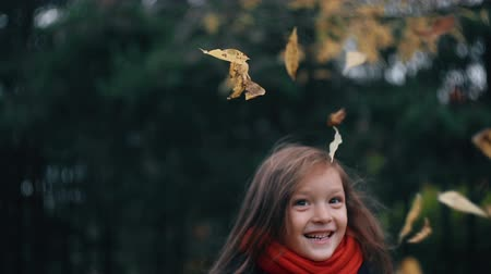 gather : funny, cheerful cute little girl close-up collects yellow autumn leaves in park slow motion