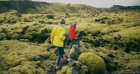 hardened lava : Aerial view of the two woman walking on the lava field in Iceland together. Tourists touches the moss bumps.