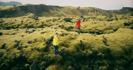hardened lava : Aerial view of the two woman walking, hiking on the lava field in Iceland. Tourists falls down on the soft moss.