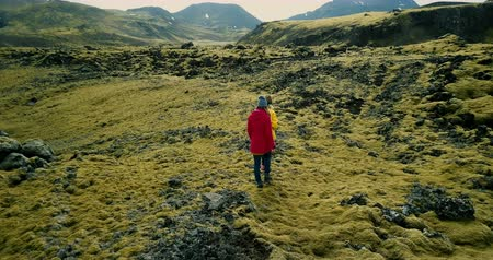 hardened lava : Aerial view of two female walking on lava field covered moss in Iceland, exploring the meadow. Tourists hiking together. Stock Footage