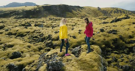 hardened lava : Aerial view of two woman standing on the rock, looking on the lava field in Iceland and dancing, feeling freedom, happy.