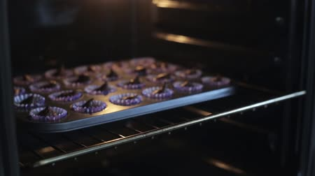 muffin : Close-up view of young woman open the oven and puts on the baking dish with dough. Female cooking the cupcakes.