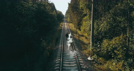 тропинка : Man running on train tracks with smoke bomb. Drone back view. Runner signaling to oncoming train. Autumn forest railway.