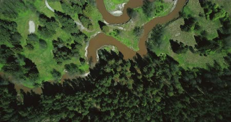 waste water : Drone flyover revealing dirty river in forest. Aerial 4K shot of nature. Ecology environmental pollution problems.
