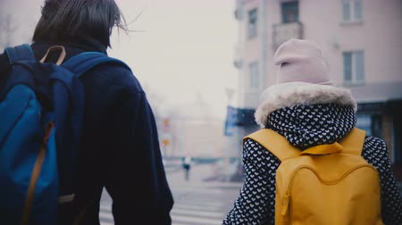 Back view happy relaxed young romantic couple in casual clothes walk together holding hands on a snowy cold winter day. Dostupné videozáznamy